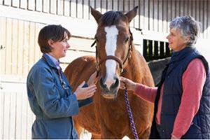 Emphysème pulmonaire du cheval