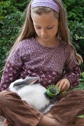 mue-fille brossant un lapin