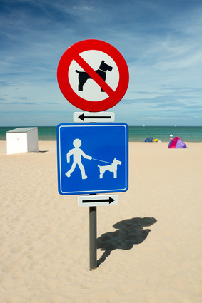 Direction sign for dog beach
