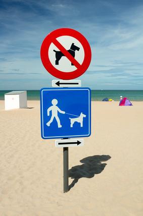 baignades-panneau interdiction chien sur plage