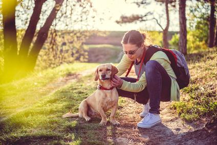 chien et son maitre en foret-maladie de lyme
