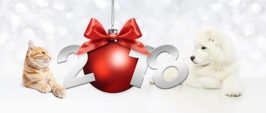 Bientôt la nouvelle année, et si je prenais quelques bonnes résolutions ?