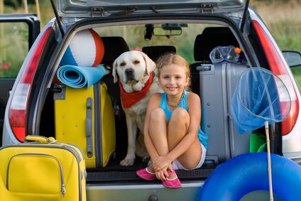 chien et enfant assis dans coffre voiture-quiz