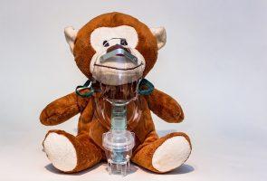 L'aerosolthérapie chez le chien, chat et cheval