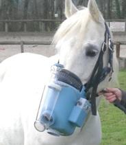 cheval aersosol - aerosoltherapie