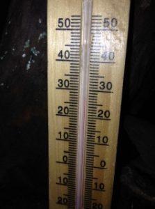 thermometre - terrarium iguane
