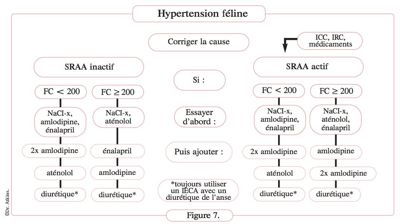 arbre-decisionnel-therapie-hypertension-chat