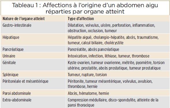 Tableau affections abdomen aigu - pancreatite chien