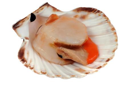 Le corail de la Saint-jacques est-elle sa réserve de nourriture ? Quiz de fin d'année