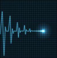Cardiomyopathies chez le chat : risques et tendances