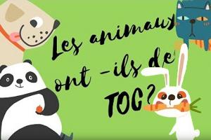 Les animaux ont-ils des TOC ?